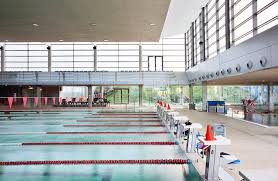 Campeonato de Gipuzkoa de natación escolar