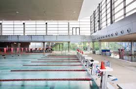 Campeonato de Gipuzkoa de natación adaptada + Campeonato con aletas